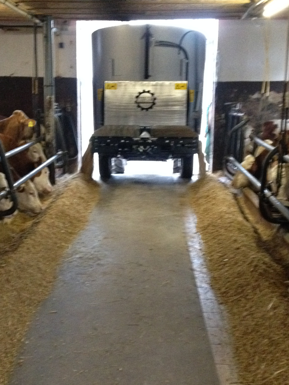 Trailed mixer-wagon HIRL T Vertikal 600 S - Also suitable for low byre entrances